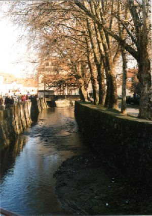The Livadić Street and Gradna creek
